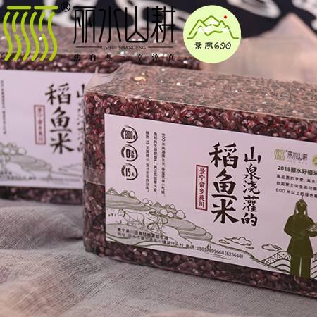 【景宁600】景宁英川稻鱼米 血糯米 山泉浇灌的稻鱼米 1斤装