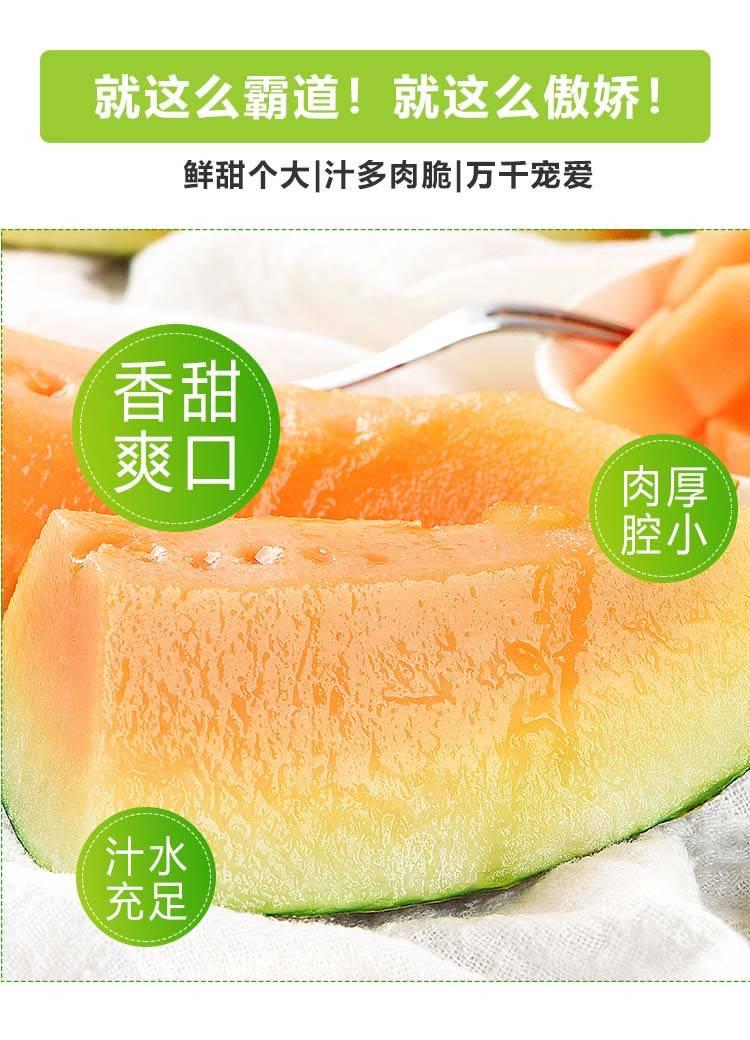 新疆哈密瓜新鲜【买5斤送5斤】 应季当季水果整箱包邮 西州蜜瓜 香甜网纹瓜 黄金蜜瓜 新鲜甜瓜甜瓜
