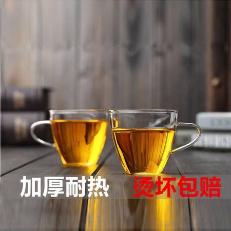 两只装耐热花茶杯手工吹制玻璃小水杯150ml品茗茶杯花茶壶配套品茗杯