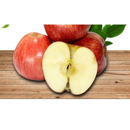 现货新西兰嘎啦果10-12个进口苹果新鲜果姬娜果进口新鲜水果