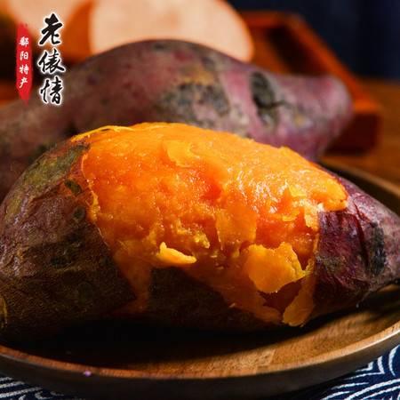 寻味江西 鄱阳蜜薯 香甜软糯 丝少细腻 3斤/5斤可选