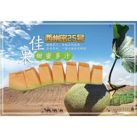 【鲜果上市~】新疆吐鲁番西州密25号哈密瓜甜瓜原产地直发 2-8斤装 新鲜大果脆瓜甜瓜蜜瓜