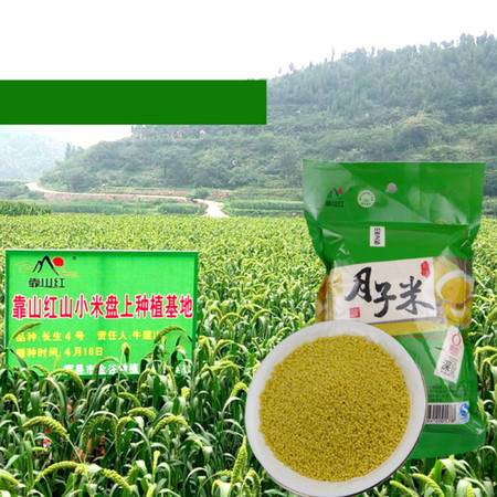 靠山红小米 新小米月子米(袋装)400g  深山区, 熬粥浮油 唯有太行 靠山红的小米