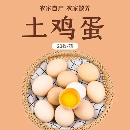 农家自产 农家散养土鸡蛋20枚/箱 营养健康