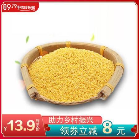 【919乡村振兴】靠山红 新小米大金苗小米1000克 粒粒亮黄 清香顺滑