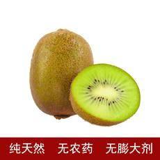 全国包邮五斤绿果绿心猕猴桃奇异果