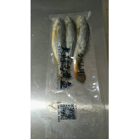【台邮农特产】台州椒江一江山岛大陈黄鱼200g(±20g)*3条/袋