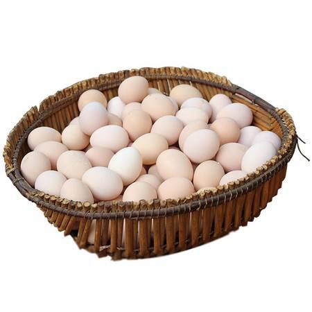 栗邮扶贫 119  贫困户家庭养殖土鸡蛋1箱    仅配送上栗范围