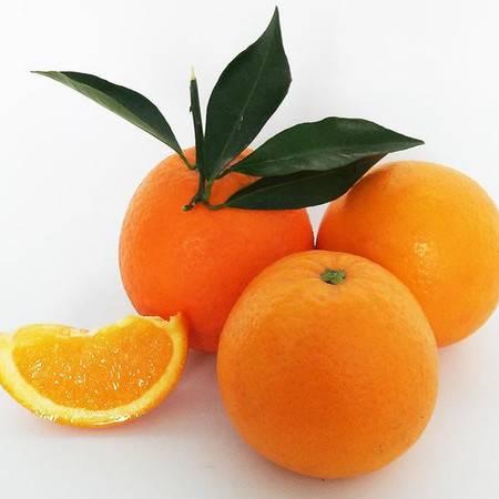 【邮政农品】奉节脐橙带箱6斤装 (果径70-75mm)  新鲜采摘,每天发货!