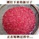 【壶关县扶贫地方馆】御香阁 农家自种大红豆红腰豆100g 包邮(偏远地区除外)