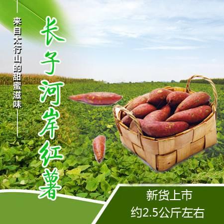 【上党馆.长子特产】邮政助农 农家自产山西长子河岸红薯 约2.5公斤左右 包邮(偏远地区除外)