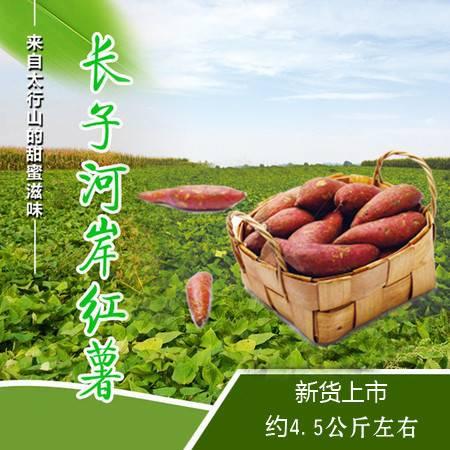 【上党馆.长子特产】邮政助农 农家自产山西长子河岸红薯 约4.5公斤左右 包邮