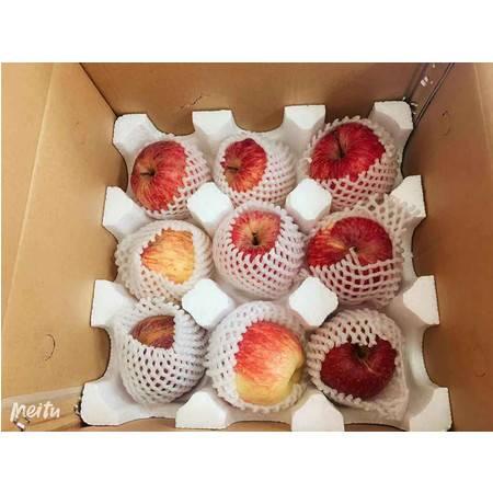 【阿坝邮政】茂县高原脆甜红富士 18个/盒 包邮(下单立减10元)