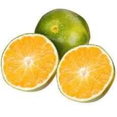 【邮政助农】农夫乡情 宜昌特产新鲜蜜桔时令果薄皮桔子5斤装