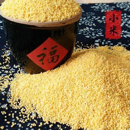 【香山藜麦】杂粮小米香甜软糯  香山小米 500g