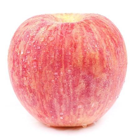 红富士苹果5斤 新鲜孕妇水果应季脆甜多汁 山西苹果HLG
