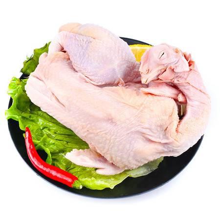 买一送一 现杀煲汤老母鸡 去毛去内脏后 新鲜活杀鸡肉笨鸡月子鸡老母鸡农家散养土鸡