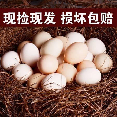 【邮特惠硬核补贴】土鸡蛋农家散养新鲜纯农村自养天然40枚草鸡蛋柴鸡蛋本笨鸡蛋