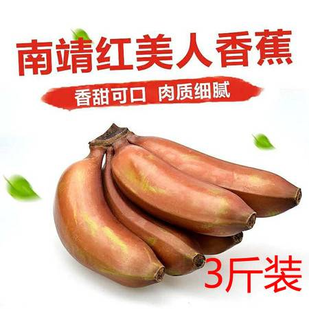 【邮乐漳州琯】红美人蕉3斤装香蕉红色香蕉红皮 ZZNJ