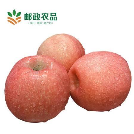 【平阳馆 特惠价】山西翼城红富士苹果 脆甜多汁 10斤装