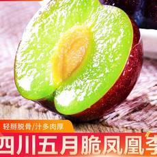 正宗五月脆红凤凰李5斤李子青红脱骨脆李半边红水果当季新鲜包邮