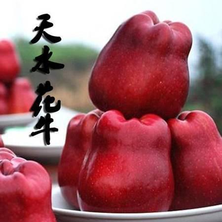 【麦积区扶贫地方馆】天水花牛苹果 75-80mm带箱4枚