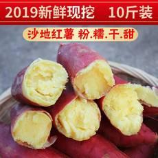 【邮政助农】陕西现挖新鲜板栗红薯5斤10斤装红薯是大小搭配装的自然成熟大小都有不能接受下单需谨慎