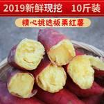 预售【邮政助农】陕西现挖沙地新鲜板栗红薯10斤,红薯是大小搭配装的自然成熟大小都有不能接受下单需谨慎