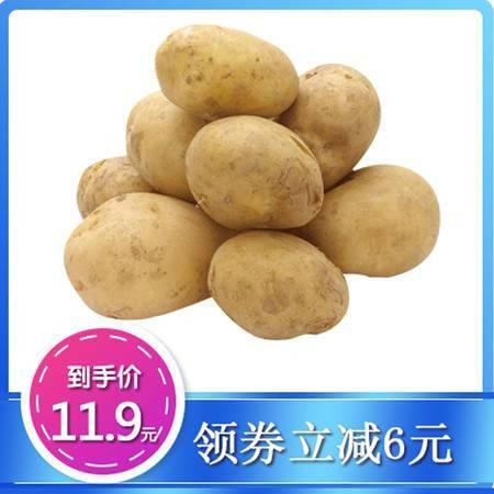 【五峰扶贫馆】湖北五峰印象高山小土豆黄皮黄心洋芋5斤/盒