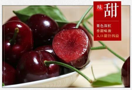 汉源大樱桃2斤全国包邮