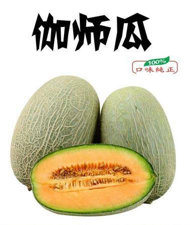 【扶贫助农】新疆伽师瓜5-7斤/每箱一到两个装