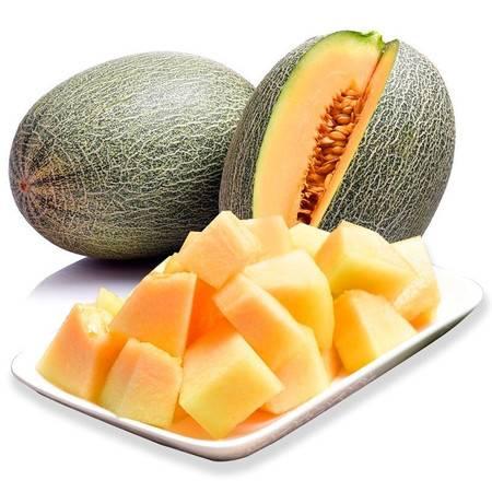 新疆哈密瓜5-7斤装西州蜜瓜甜瓜蜜瓜网纹瓜新鲜水果包邮