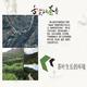 【安庆电商助农消费节特惠产品】安庆潜山市天柱毛毛月2021当季新茶上市