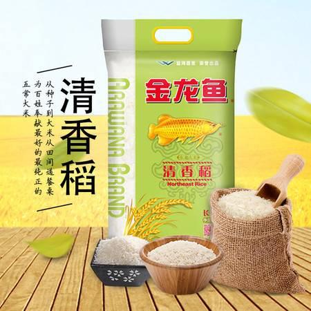金龙鱼清香稻大米5kg  黑龙江生态平原 东北大米 包邮
