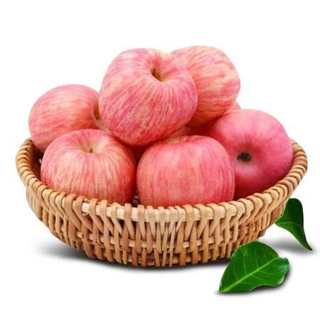 【邮政助农 精准扶贫】陕西特产新鲜有机红富士苹果12斤包邮农家纯天然脆甜