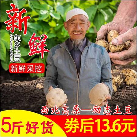 """【邮乐 临夏馆】东乡""""奋豆""""洋芋5斤包邮,十年九旱就是这么好吃!(部分地区不发货)"""