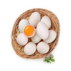 铜仁农家散养新鲜土鸭蛋20枚 破损包赔偏远地区不发货
