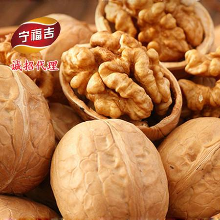 宁 福吉 新疆原味生核桃新货 特产薄皮核桃500克 坚果炒货休闲零食包邮
