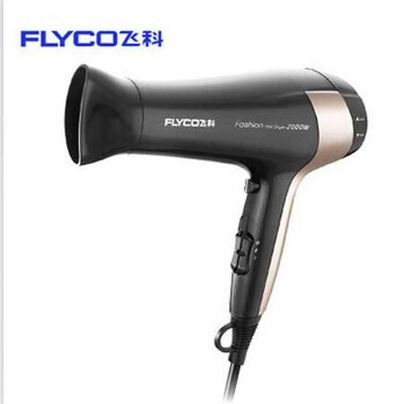 飞科(FLYCO)吹风机FH6231