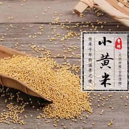 农家自产贵州锦屏杨二嫂农家老品种糯小米 小黄米500g*3包/件 省内包邮