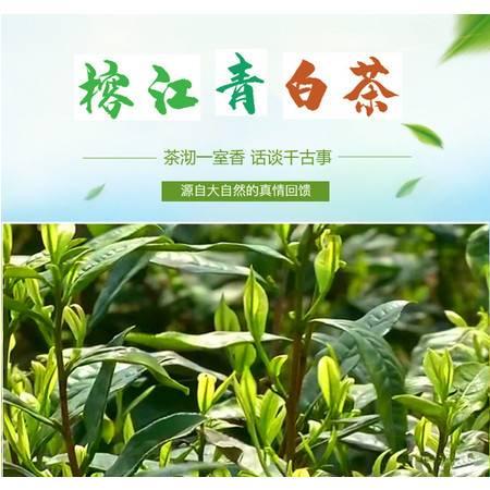 【榕江青白茶】(青白雅致)茶香淡雅,毫香新鲜