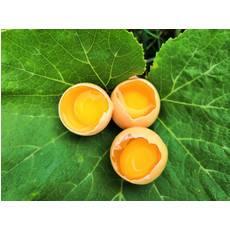【东莞】黄壳土鸡蛋约3.6斤装(36个)