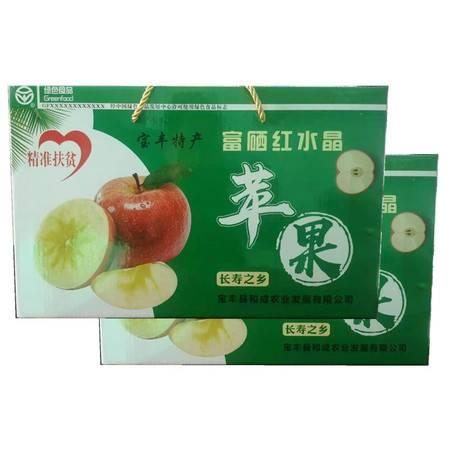 【平顶山消费扶贫】宝丰红水晶苹果5kg