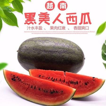 当季越南新鲜黑美人西瓜水果包甜精选热带新鲜水果