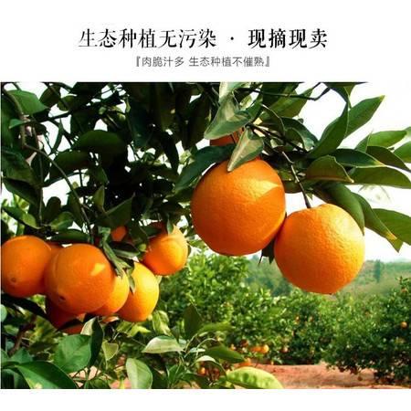邮鲜生 富川县长寿之乡富川脐橙5KG广东包邮