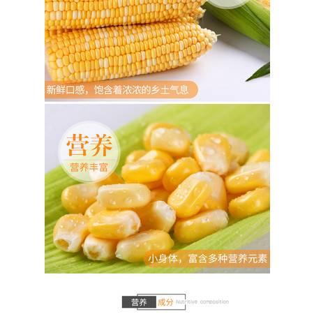 【宁陵馆】爆米花玉米粒自制爆米花原料  2斤装