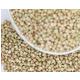 豫西3.04kg精品荞麦