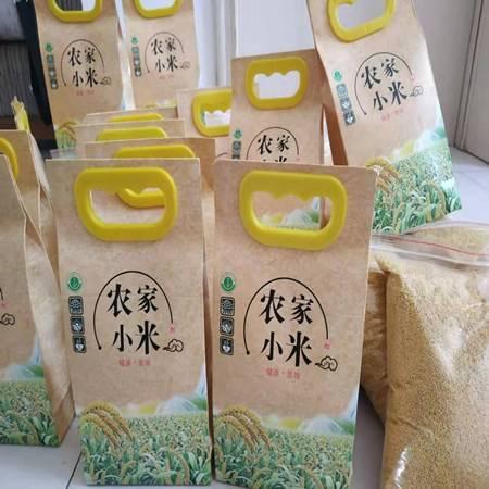 新米小黄米农家小米