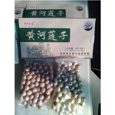 农家自产 黄河之莲黄河莲子4盒装易煮香糯