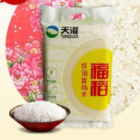 天灌大米 2.5kg福稻 实惠真空装  范县特产大米